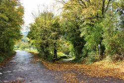 Burgweg im Herbst