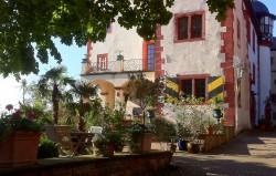 Mediterrane Pflanzen im Burghof